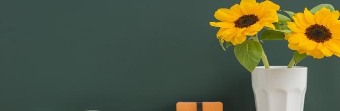 「志望校にスルッと合格できる夏休みの勉強法と過ごし方」サムネイル画像